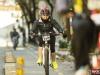 urban-city-bike-2175-jpg