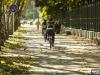 urban-city-bike-2469-jpg