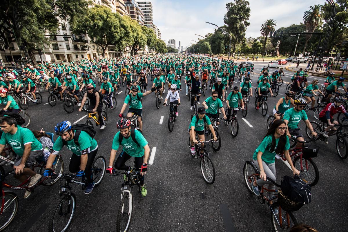 bici vittal II edición 2015 b1